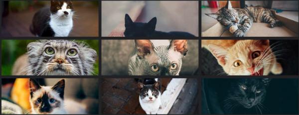 5 sites pour une belle image de couverture Facebook