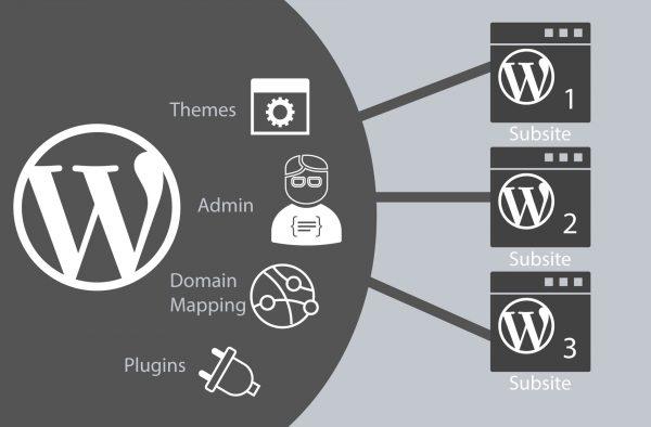 Gagner du temps avec WordPress Multisite