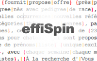 EffiSpin : outil gratuit de content spinning