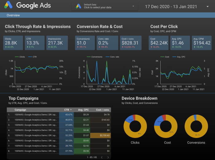 Sample Google Ads Overview Report